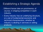establishing a strategic agenda7