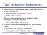 teragrid transfer environment