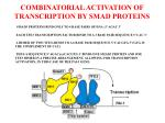combinatorial activation of transcription by smad proteins