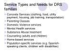 service types and needs for drs families