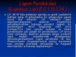 lignin peroksidaz ligninaz lip e c 1 11 1 14