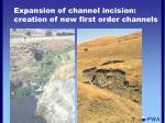 expansion of channel incision creation of new first order channels