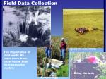 field data collection60