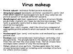 virus makeup