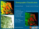 demographic classification