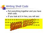 writing shell code65