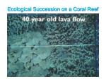 ecological succession on a coral reef25