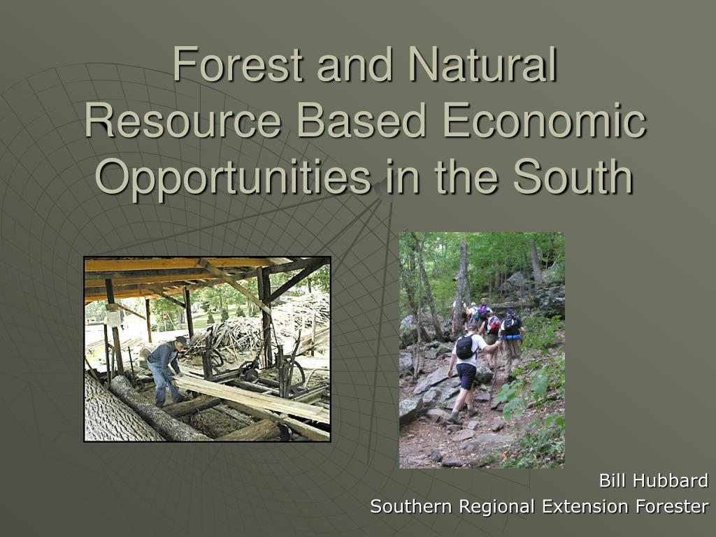 forest and natural resource based economic opportunities in the south l.