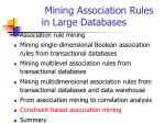 mining association rules in large databases24