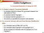 cadre budg taire23
