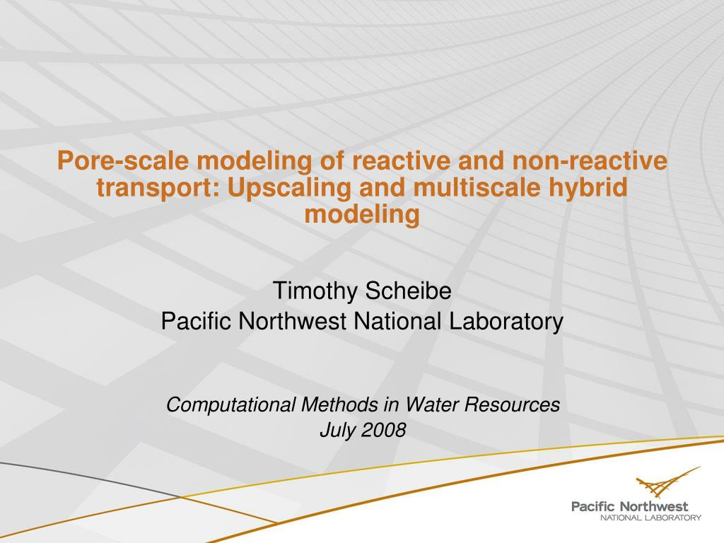 pore scale modeling of reactive and non reactive transport upscaling and multiscale hybrid modeling l.