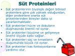 s t proteinleri
