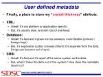 user defined metadata