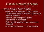 cultural features of sudan