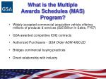 what is the multiple awards schedules mas program