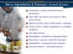 kerry ingredients flavours growth drivers