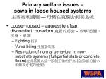 primary welfare issues sows in loose housed systems