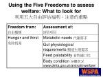 using the five freedoms to assess welfare what to look for