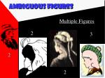 ambiguous figures18