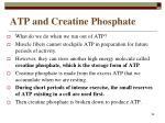 atp and creatine phosphate