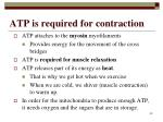 atp is required for contraction