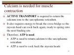 calcium is needed for muscle contraction42