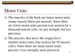 motor units61