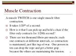 muscle contraction57