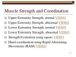 muscle strength and coordination