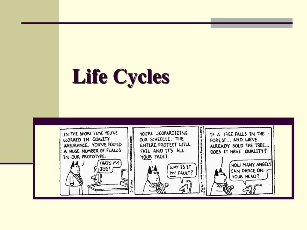 life cycles l.