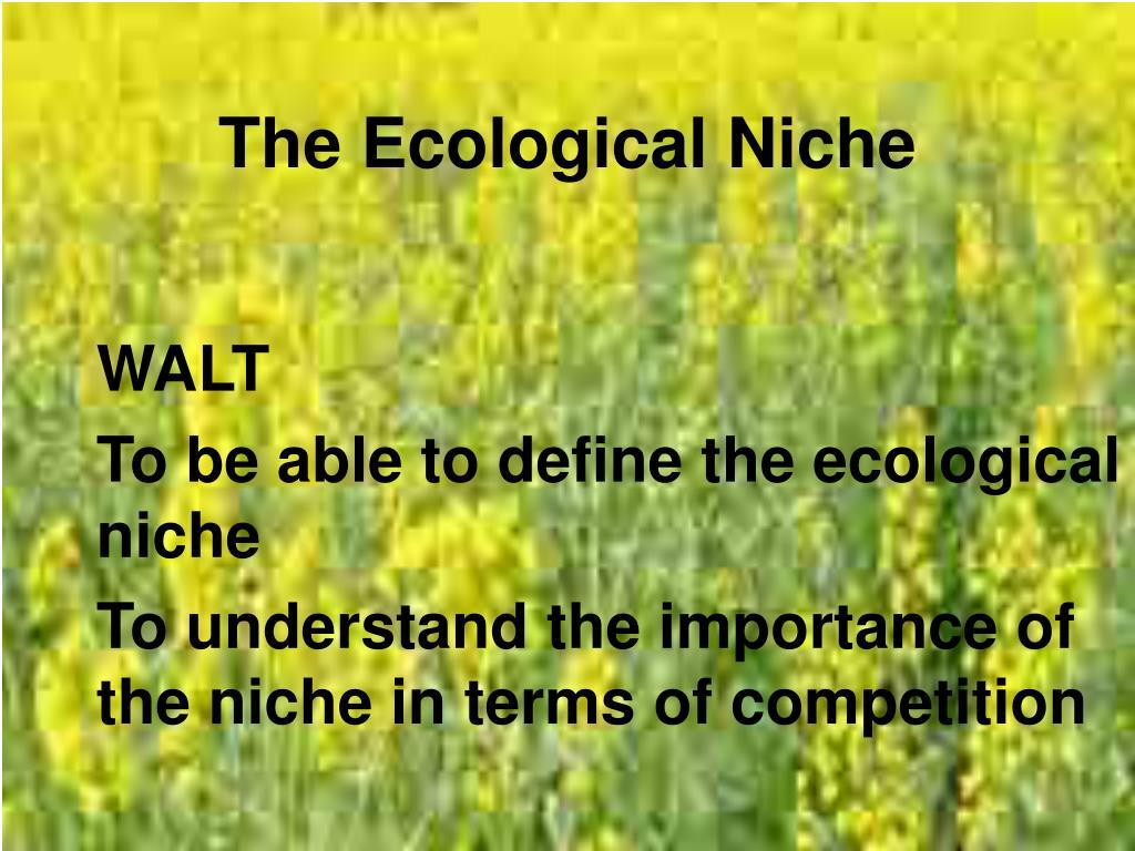 the ecological niche l.