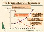 the efficient level of emissions