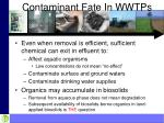 contaminant fate in wwtps