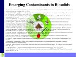 emerging contaminants in biosolids