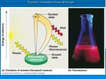 excitation of isolated chlorophyll by light