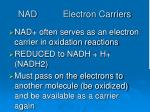 nad electron carriers