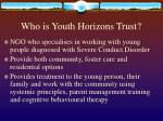 who is youth horizons trust