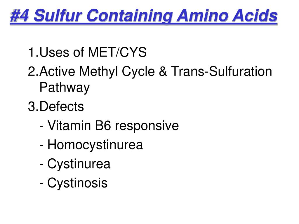 4 sulfur containing amino acids l.