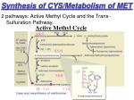 synthesis of cys metabolism of met