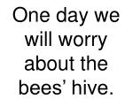 one day we will worry about the bees hive