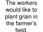 the workers would like to plant grain in the farmer s field