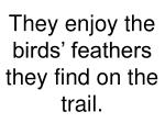 they enjoy the birds feathers they find on the trail