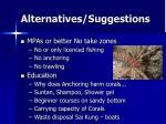 alternatives suggestions20