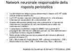network neuronale responsabile della risposta peristaltica