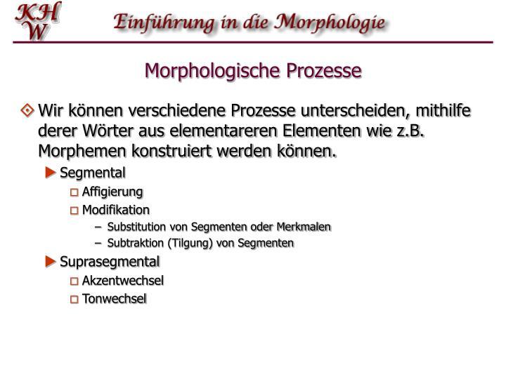 Morphologische prozesse2