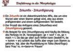 zirkumfix zirkumfigierung
