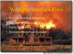 wildland interface fires87