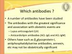 which antibodies
