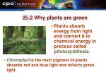 25 2 why plants are green
