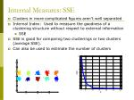 internal measures sse